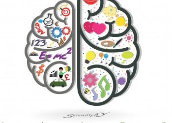 Cómo hacerse Experto en Inteligencia Emocional